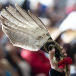 Une main tient dans les airs une plume à laquelle est fixé un ruban rouge