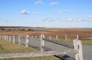 Route et clôture dans un champs sur la baie Fundie